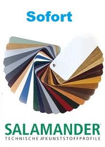 Salamander-farbdekoren-sofort